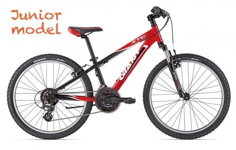 giant xtc jr 124 mountainbike huren voor kinderen
